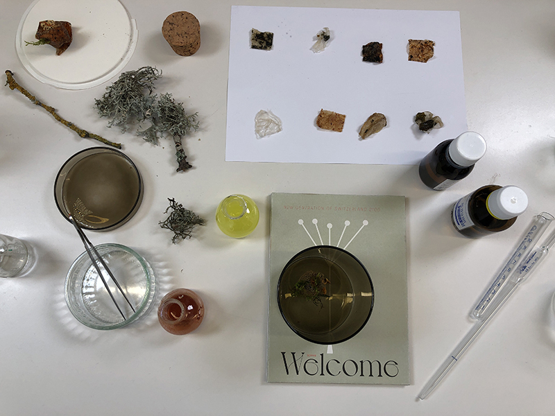 biodegradable plastics made from natural substances